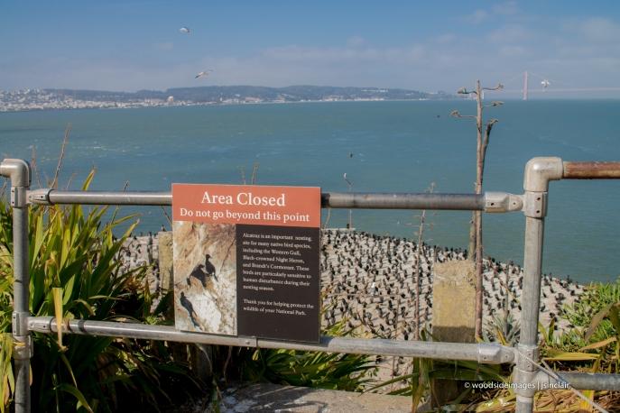 Alcatraz (1 of 1)-11