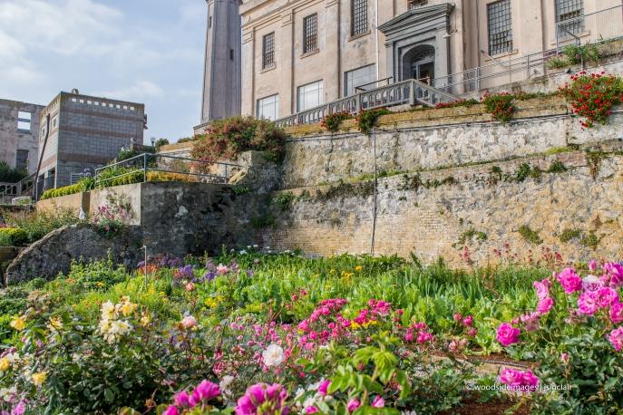 Alcatraz21