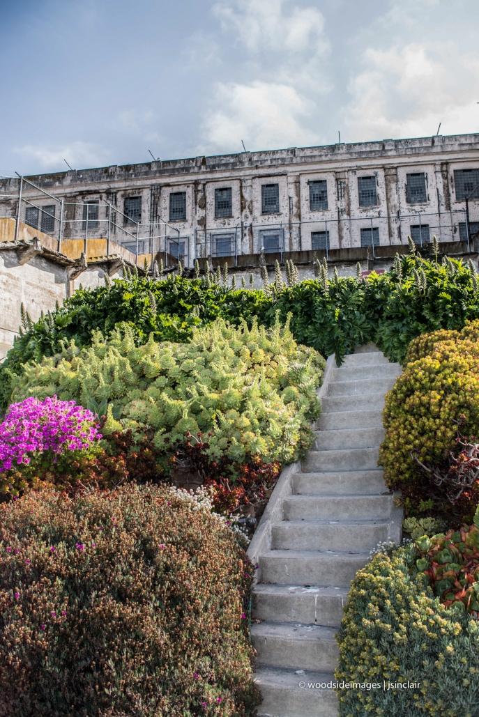 Alcatraz48